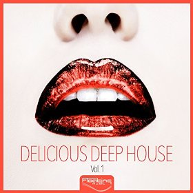 Delicious Deep House Vol 1
