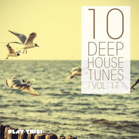 10 Deep House Tunes Vol 17