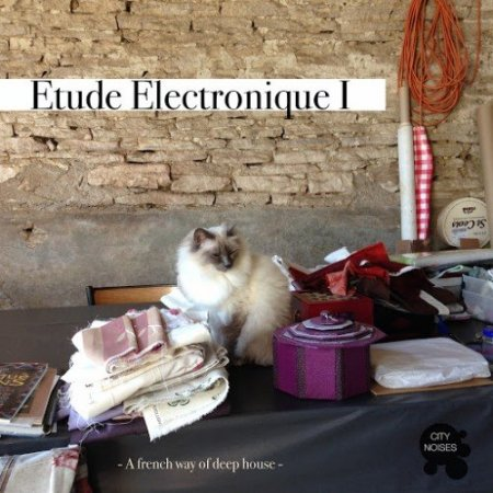 Etude Electronique I: A French Way of Deep House