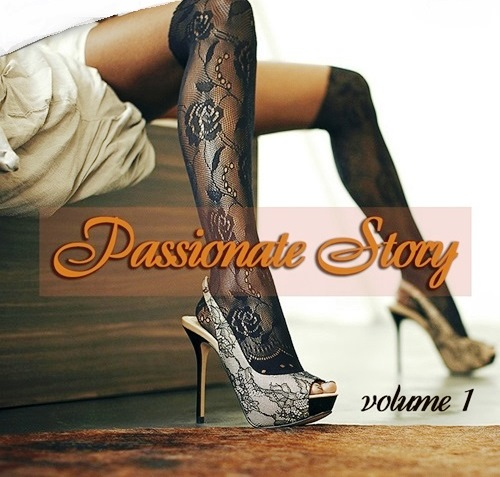 Passionate Story Vol. 1